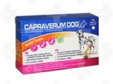 Capraverum Dog Bones - Joints 30 tbl.