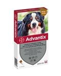 Advantix pes od 40 do 60 kg spot-on sol. 1 x 6,0 ml