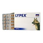 Lypex 60 cps.