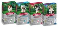 Advantix pes do 4 kg spot-on sol. 4 x 0,4 ml